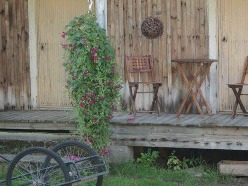 2014_07_29_kukkis-060