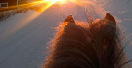 auringonlaskuun2